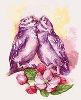 """Картины раскраски по номерам """"Влюбленные совушки"""" набор для творчества"""
