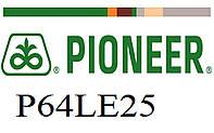 Гибрид подсолнечника Пионер П64ЛЕ25 (Pioneer P64LE25) под гранстар, экспресс
