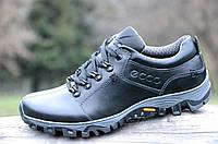 Полуботинки, кроссовки мужские популярные практичная модель натуральная кожа черные (Код: 966)