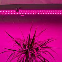 Світлодіодний фітосвітильник для рослин R: B = 5: 1 (5 червоних: 1 синій) 36W