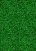 Краситель (пигмент) Зелёный для бетона, штукатурки и краски 1000гр
