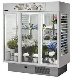 Витрины, холодильные камеры для цветов