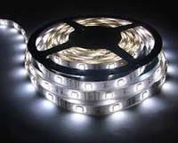 Светодиодная лента белая LED 5050 W 5 метров, led 5050 smd белая, лед лента подсветка 5050 smd led
