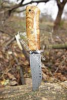 Нож охотничий из дамасской стали ,рукоять кап березы ,прочный и надежный+чехол из кожи,Ручная работа !!