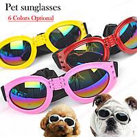 Солнцезащитные очки для собак
