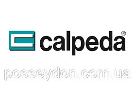 Ремонт насосов Calpeda