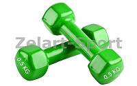Гантели для фитнеса с виниловым покрытием Радуга (2x1кг)  (2шт, цвета в ассортименте)