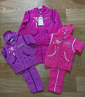 Трикотажный костюм с начесом двойка для девочек оптом, Crossfire 1-5 лет. арт.AF200