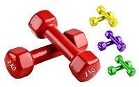 Гантели для фитнеса с виниловым покрытием Радуга (2x2кг)  (2шт, цвета в ассортименте)