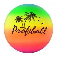 Детский мяч Радуга для волейбола Profi 23см (MS 0008)