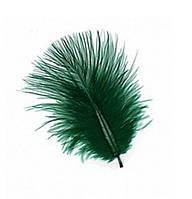 Перья декоративные (Перо) Марабу Изумрудные зеленые 5-10 см 10 шт/уп
