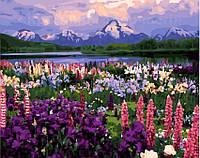 Картина по номерам 40х50 Долина полевых цветов (GX21019)