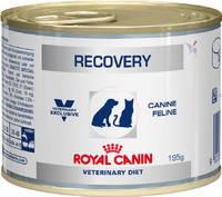 Royal Canin RECOVERY консервы для собак и котов в период восстановления после болезни 195 гр