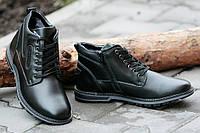 Ботинки полуботинки зимние кожа мужские черные классические практичные на двух молниях (Код: 197)