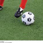 Искусственная трава для футбола Jutagrass Fast Track 15, фото 1