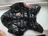 Зимняя куртка для собак мелких пород с капюшоном
