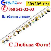 Лінійка магнітна 20х205