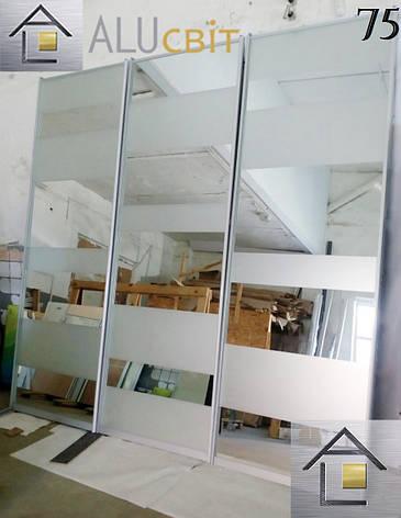 Раздвижные двери купе (в шкафы, гардеробные) фотопечать, лакобель, пескоструй, фото 2