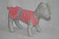 Платье для собак Гольф Новинка 18*22