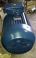 Электродвигатель МО280S2 110кВт 3000 об/мин, фото 1