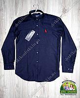 Рубашка Polo синяя