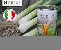 Лук батун Японский / JAPANESE (Семилетка), Hortus Италия, фермерская фасовка 500 г банка