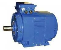 Электродвигатель 4AMHУ250S2 110кВт 3000 об/мин
