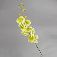 Орхидея (90 см, силикон) салатовая