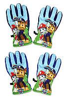 Непромокаемые перчатки для мальчиков Paw Patro оптом,3/4-5/6лет.