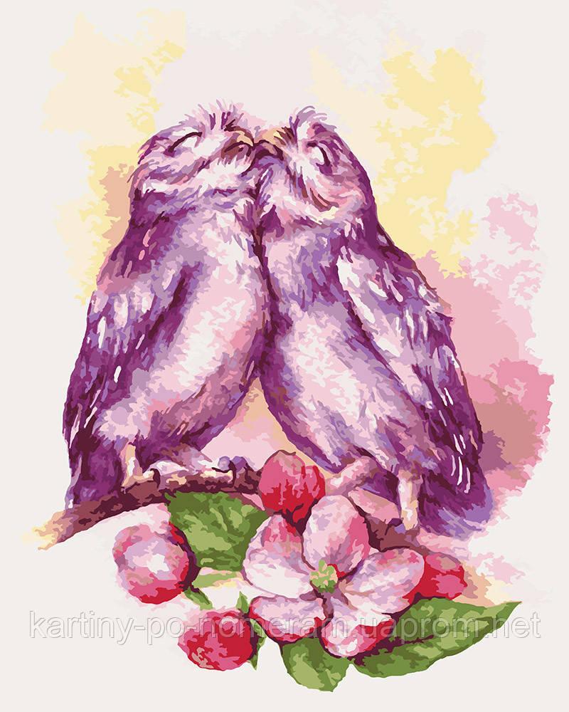 Картина по номерам KHO4034 Влюбленные совушки (40 х 50 см)