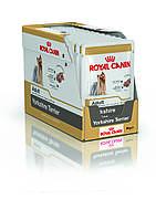 Royal Canin  YORKSHIRE TERRIER ADULT (в соусе) 12*85гр  влажный корм для собак породы йоркширский терьер с 10м
