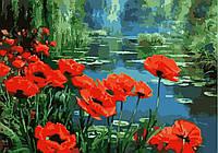 Картина по номерам для творчества Маки у пруда 40х50см от бренда Идейка