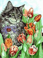 """Картины по цифрам """"Котик в тюльпанах"""" 30х40см, С Коробкой"""