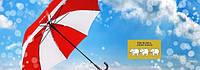Зонты Три Слона, компания, бренд