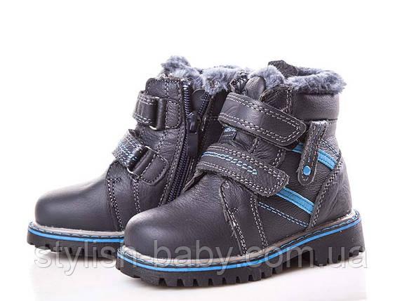 68805bf573b1ea Детские зимние ботинки оптом. Детская зимняя обувь бренда Clibee для  мальчиков (рр. с 21 по 26)