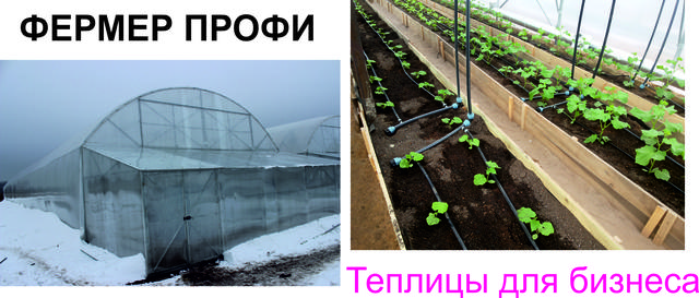 продажа фермерских хозяйств в украине