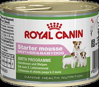 Royal Canin Starter mousse -195 гр для сук в конце беременности, в период лактации, для щенков до 2 месяцев