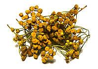 Пижма обыкновенная цветки 100 грамм
