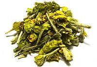 Лимонник крымский (татар чай, чабан чай, железница крымская), фото 1