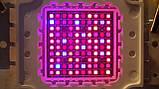 Фитолампа GrowStar 100W. Grow LED Lamp 100W 7 Band Spectrum., фото 5