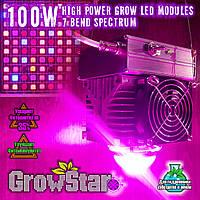 Фитолампа GrowStar 100W. Grow LED Lamp 100W 7 Band Spectrum.