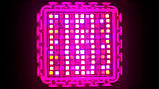 Фитолампа GrowStar 300W. Grow LED Lamp 300W (2X150W) 7 Band Spectrum., фото 6