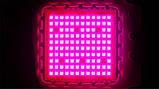 Фитолампа GrowStar 150W Полноспектровая. Grow LED Lamp 150W Full Spectrum 340-840nm., фото 5