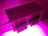 Фитолампа GrowStar 300W Полноспектровая. Grow LED Lamp 300W Full Spectrum 340-840nm., фото 3