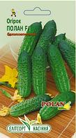 Cемена огурцов Полан F1 20 шт. пчёлоопыляемый