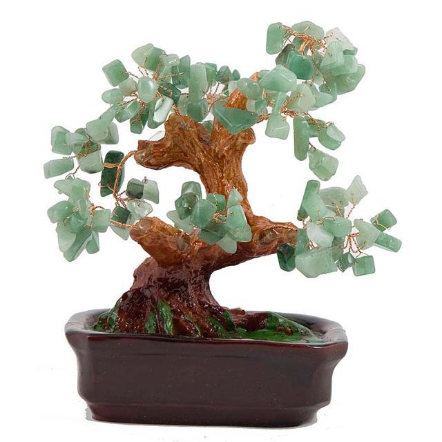 Деревья счастья Фэн-шуй