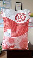 Семена подсолнечника (Лимагрейн) LG 5580