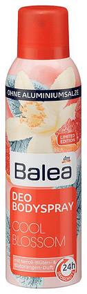 Деоспрей Balea Cool blossom 200мл, фото 2