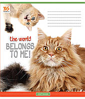 А5/12 кос. YES УФвыб Cats run the world-17, тетрадь (10шт)