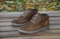 Мужские зимние ботинки Tommy Hilfiger (замша)